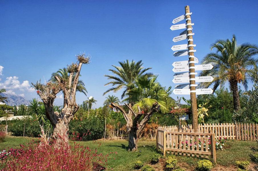 Plaj ve Bahçe